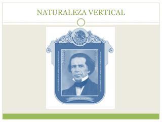 NATURALEZA VERTICAL