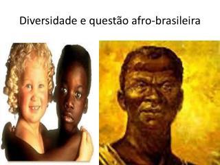 Diversidade e questão afro-brasileira