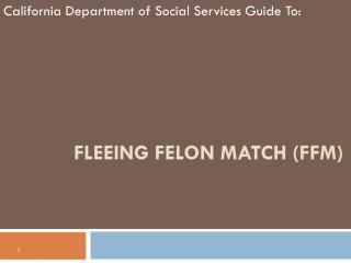 Fleeing Felon Match (FFM)