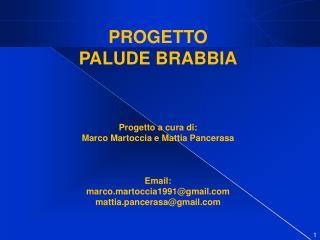 PROGETTO  PALUDE BRABBIA Progetto a cura di: Marco  Martoccia  e Mattia  Pancerasa Email: