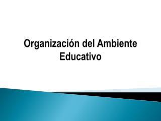 Organización del Ambiente Educativo