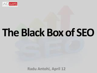 The Black  B ox of SEO