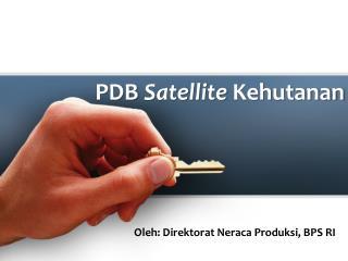 PDB  Satellite  Kehutanan