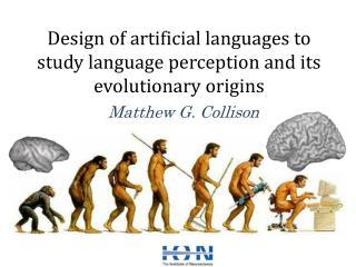 Design of artificial languages to study language perception and its evolutionary origins