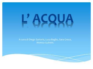 A cura di Diego  Sartoris , Luca Baglio, Sara Greco,  Monica  Gulmini .