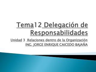 Tema 12  Delegación de  Responsabilidades
