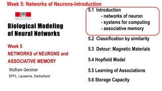 Biological Modeling of Neural Networks