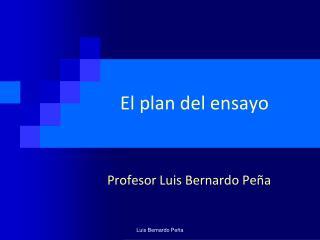 El plan del ensayo