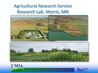 Agricultural Research Service  Research Lab. Morris, MN