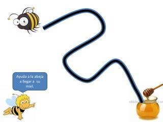 Ayuda a la abeja a llegar a  su miel.