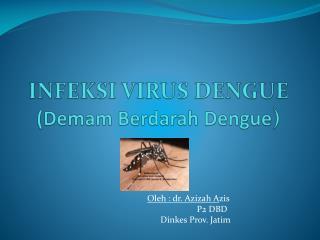 INFEKSI VIRUS DENGUE ( Demam Berdarah  Dengue )