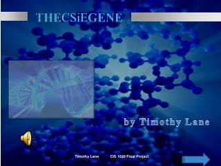 The CSiE Gene