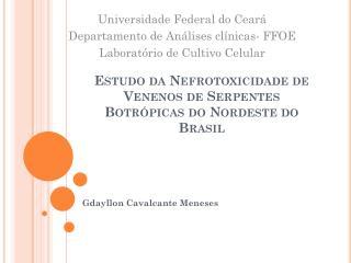 Estudo da  Nefrotoxicidade  de Venenos de Serpentes  Botrópicas  do Nordeste do Brasil