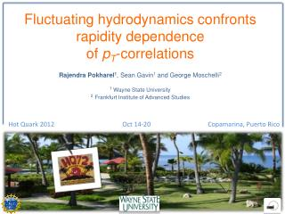 Fluctuating hydrodynamics confronts rapidity dependence  of  p T -correlations