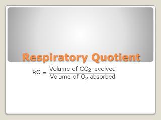 Respiratory Quotient