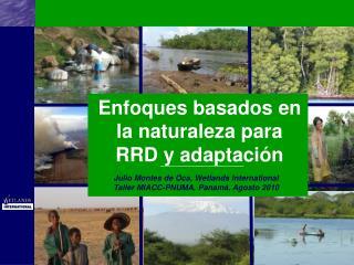Enfoques basados en la naturaleza para RRD y adaptación