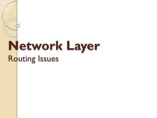 Network Layer Routing Issues