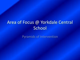 Area of Focus @  Yorkdale  Central School