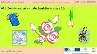 62.1 Podstatná jména rodu ženského – vzor růže