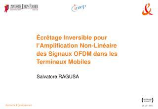 cr tage Inversible pour l Amplification Non-Lin aire des Signaux OFDM dans les Terminaux Mobiles