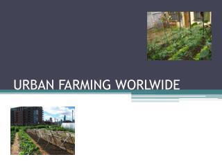 URBAN FARMING WORLWIDE