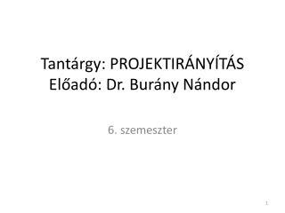 Tantárgy:  PROJEKTIR ÁNYÍTÁS Előadó: Dr. Burány Nándor