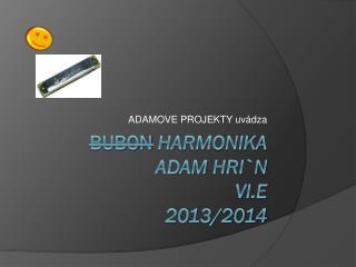 bubon Harmonika ADAM  HRI`N VI.E 2013/2014