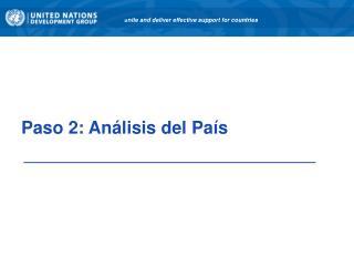 Paso 2: Análisis del País