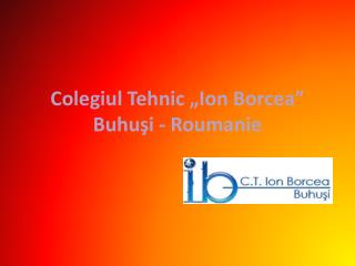Colegiul Tehnic �Ion  Borcea� Buhu?i - Roumanie