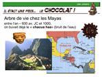 Arbre de vie chez les Mayas  entre l an   600 av. JC et 1000, on buvait d j  le   chacua haa   bruit de l eau