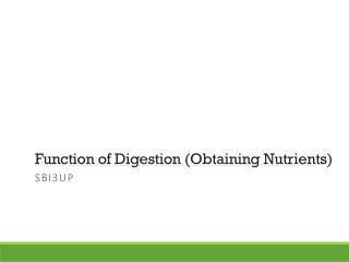 Function of Digestion (Obtaining Nutrients)