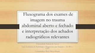 Universidade Federal de Viçosa Liga Acadêmica de Radiologia e Diagnóstico por Imagem – ALARA – UFV