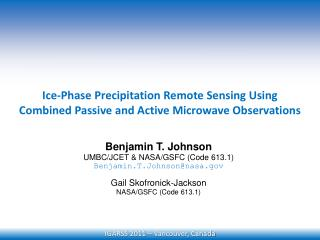 Ice-Phase Precipitation Remote Sensing Using  Combined Passive and Active Microwave Observations