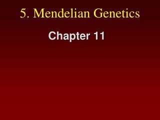 5.  Mendelian  Genetics