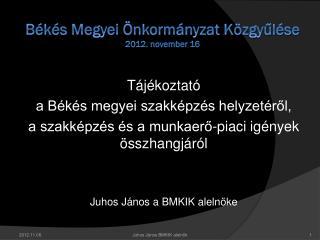 Békés Megyei Önkormányzat Közgyűlése 2012. november 16