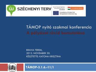 T�MOP-3.1.6.-11/1