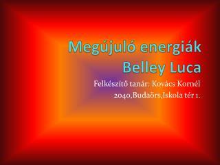 Megújuló energiák Belley  Luca