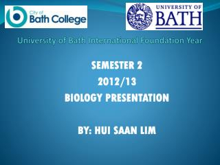 University of Bath International Foundation Year