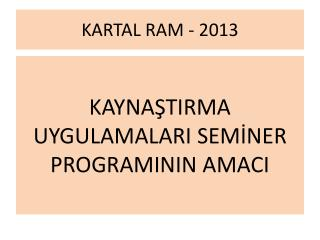 KARTAL RAM - 2013