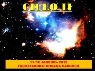 11 DE JANEIRO- 2012 FACILITADORA: ROSANA CARDOSO