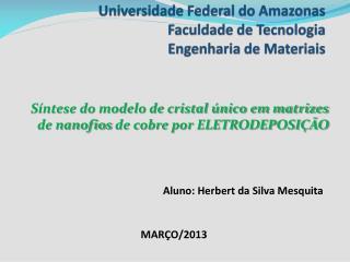 Universidade Federal do Amazonas Faculdade de Tecnologia Engenharia de Materiais
