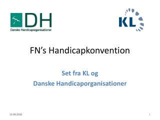 FN�s Handicapkonvention