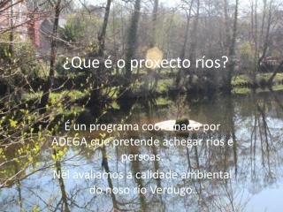 ¿Que é o proxecto ríos?