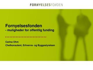 Fornyelsesfonden - muligheder for offentlig funding