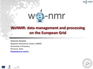 WeNMR : data management and  processing on  the European Grid