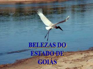 BELEZAS DO ESTADO DE GOI S