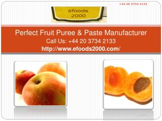 Perfect Fruit Puree & Paste Manufacturer