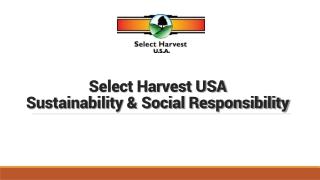 Innovation for Sustainability Environmental Management  Profitable Farming