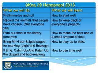 9Kea 29  Hongongoi  2013