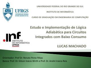 Orientador: Prof Dr. Renato Perez Ribas